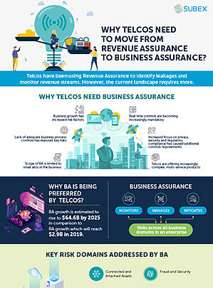 Business-Assurance-infographic