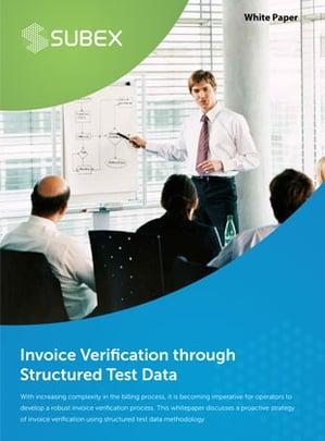 Invoice-Verification-through-Structured-Test-Data-1